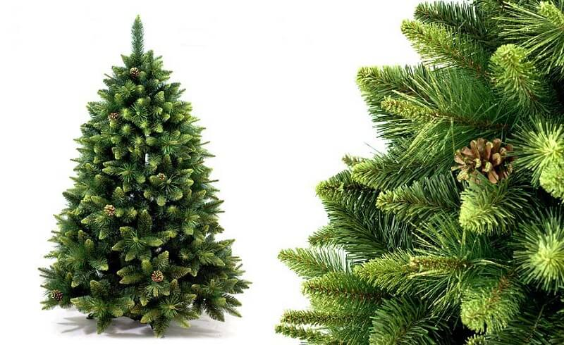 Приобрести елки крупным и мелким оптом