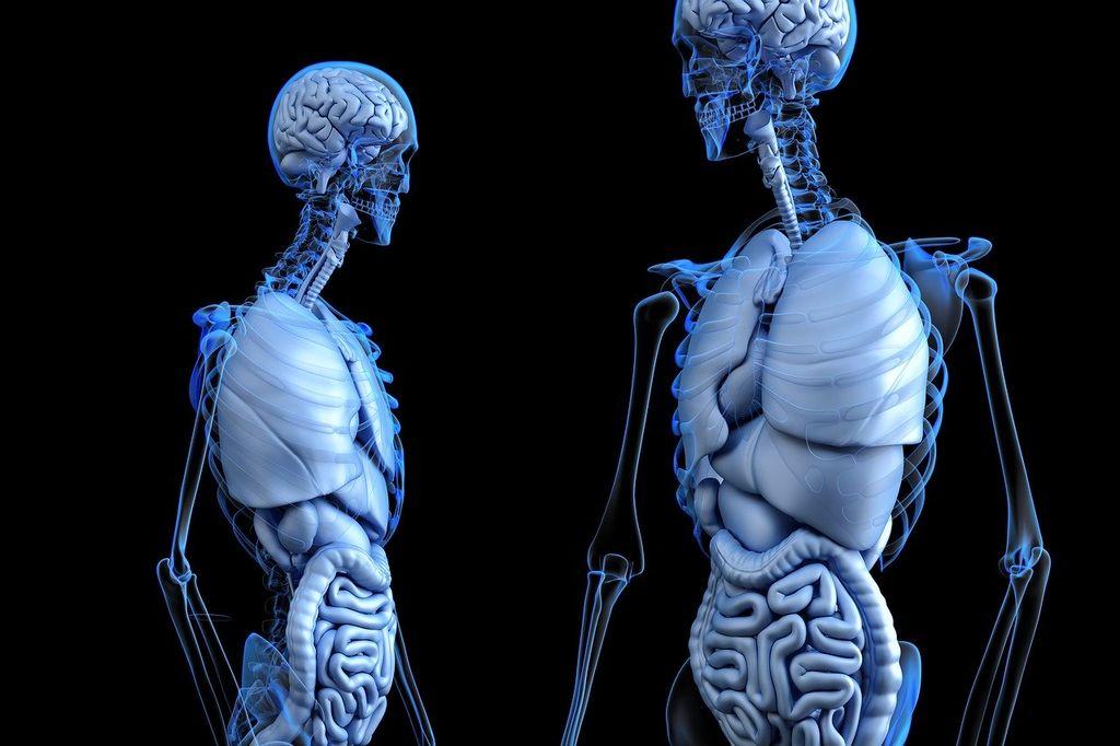 Искусственный интеллект научили выявлять гены, связанные с болезнями